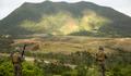 米軍キャンプ・シュワブ内で廃弾処理による山火事が発生 - 在沖米軍施設内での山火事は今年7件目