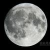 十五夜小望月(月齢14.783)