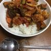ゴーヤと茄子とホタテのトマトカレー(カロリー控え目)