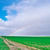 びえいの虹 9