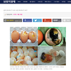【韓国のたまご】割れている卵・途中まで孵化した卵・カビが生えた卵 ~食品医薬品安全処が摘発