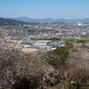 九州新幹線体験乗車 新鳥栖〜博多