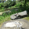 上江津湖公園の被害
