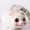 お金が貯まる家計の方程式 家計改善で貯金体質に!