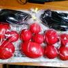採れたてトマト、撮れたて花のフォト