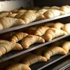 【千葉県】人気のパン屋さん『ピーターパン』でパンを買ってお出かけしよう!