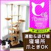 ぇぇ?キャットツインタワーが欲しいならココっ~!キャットタワー