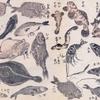 第53回彦坂ITOSAKI塾 3月14日(土)のお知らせ