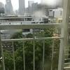 人生初の台風1号被害