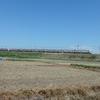 くるっと池田と天空の茶畑