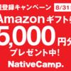 【オンライン英会話】ネイティブキャンプを試したらかなりよかった。DMMとの比較あり