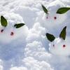 雪が舞うようにお札が舞えばいいのに。
