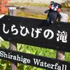 美瑛は青い池観光のついでに、白ひげの滝へ行ってきた。