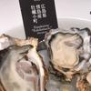 【エムPの昨日夢叶(ゆめかな)】第1677回『食欲の秋。栄養満点の牡蠣を10種類の調理法で食べ比べした夢叶なのだ!?』[9月20日]