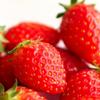 イチゴの4品種を食べ比べをしてみた! 【宮城県産イチゴ4品種食べ比べセット】