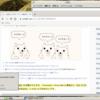 KNOPPIX 9.1 CD でとりあえずの日本語表示