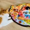 【ガチレビュー】猫壱さんの自動猫じゃらし「キャッチ・ミー・イフ・ユー・キャン2」で久々に遊んでみた。