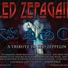 本家も認めた!レッド・ツェッペリンのトリビュートバンド「レッド・ツェッパゲイン」!(Led Zepagain)