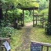 北鎌倉:南窓 宗雪 ジャングル月見茶会