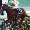 1/29(日)シルクロードS(G3)の予想。京都無敗の明け4歳馬に注目。