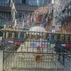 ネパール ウルルン記