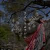 【おそとのええとこ】きょうをよすがに【京都-北野天満宮】