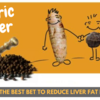 Turmeric – The Best Bet To Reduce Liver Fat Naturally
