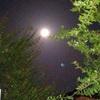 美しい満月