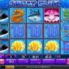 6月11日 GREAT BLUE100回転 +3.57ドル