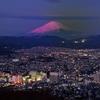 神奈川県の秦野にある弘法山公園は、穴場な夜景スポット