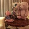 結婚記念日のぬいぐるみさん達の旅☆*:.。. o(≧▽≦)o .。.:*☆