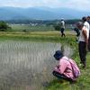 野菜畑の手入れに笹もち作り。小菅の里を散策:百姓塾2018年6月