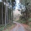 【奈良攻略】初詣:奈良県の氷室神社と氷室神社に行ってきました。