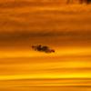 【一日一枚写真】橙色の空に浮かぶ【一眼レフ】