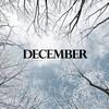 12月になっても土砂降り