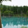 猛暑の北海道≪#6≫池 ―美瑛ブルー 「青い池」―