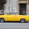 【ブルベ冬】似合う黄色はレモンイエローだよという話。