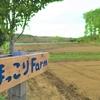 無農薬野菜作り3年目 平成最後の春 春蒔き大麦にチャレンジ