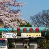 東京デートコース(1泊2日)