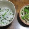 セリご飯とクレソンサラダ