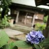 神社 with ...