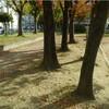 公園散策寸話