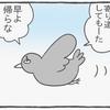 ハトぱっぱ29
