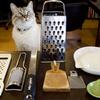 日本の一般家庭には平均何台のおろし器があるのか?