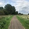 【イギリス留学記】70日目(Sat) 近所の沼地を散策する。英会話の極意に気づく