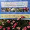 ガーデンネックレス2021 日本大通り