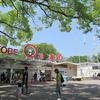 週末は神戸王子動物園でお弁当