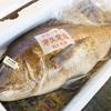 2017年4月1日 小浜漁港 お魚情報