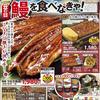 企画 メインテーマ 鰻を食べなきゃ ヤオコー 7月27日号