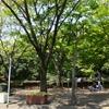 2017年4月28日(金)若洲海浜公園 100kmライド Part 1/3